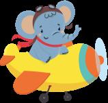 【画像】飛行機に乗った象